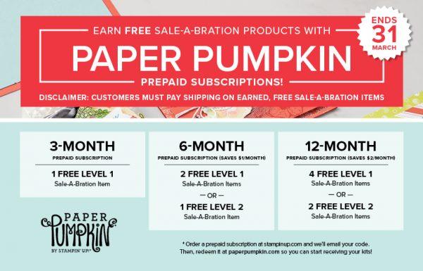 Prepaid Paper Pumpkin promotion, Brian King