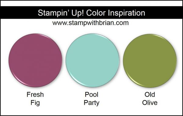 Stampin' Up! Color Inspiration: Fresh Fig, Pool Party, Old Olive