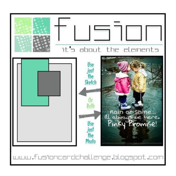 Fusion Rain or Shine
