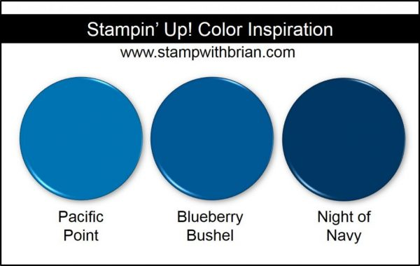 Blueberry Bushel Comparison, Stampin' Up! 2018-2020 In Color: Pacific Point, Night of Navy
