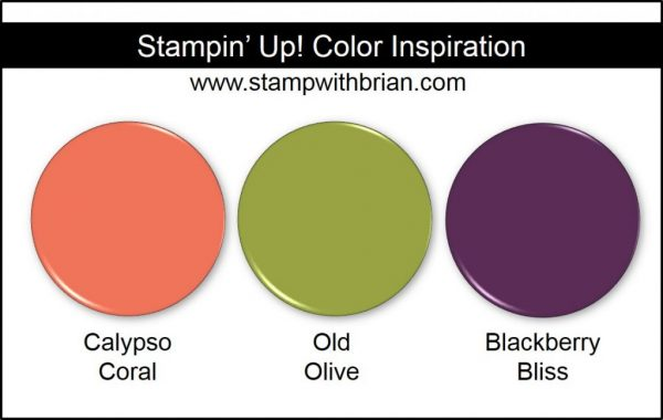 Stampin' Up! Color Inspiration: Calypso Coral, Old Olive, Blackberry Bliss