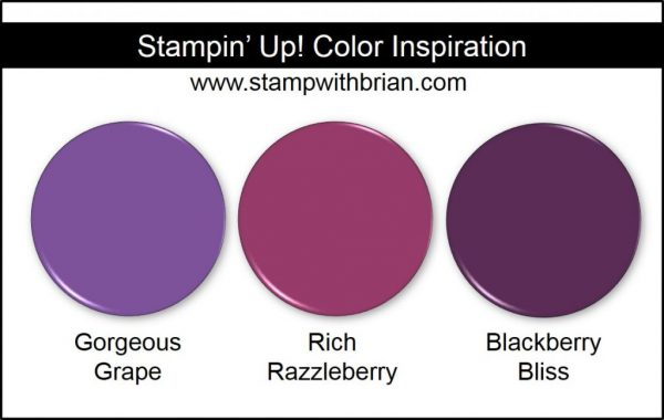 Gorgeous Grape Comparison, Stampin' Up! New Color: Rich Razzleberry, Blackberry Bliss
