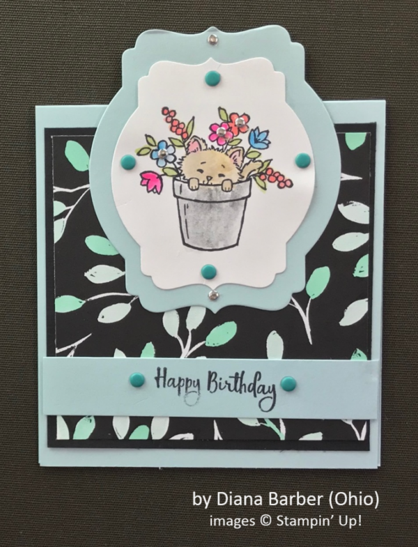 by Diana Barber, Stampin' Up!, Spring One-for-One Card Swap