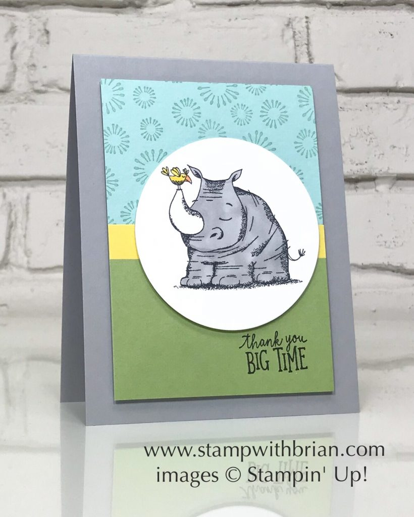 Animal Outing, Birthday Backgrounds, Stampin' Up!, Brian King, thank you card