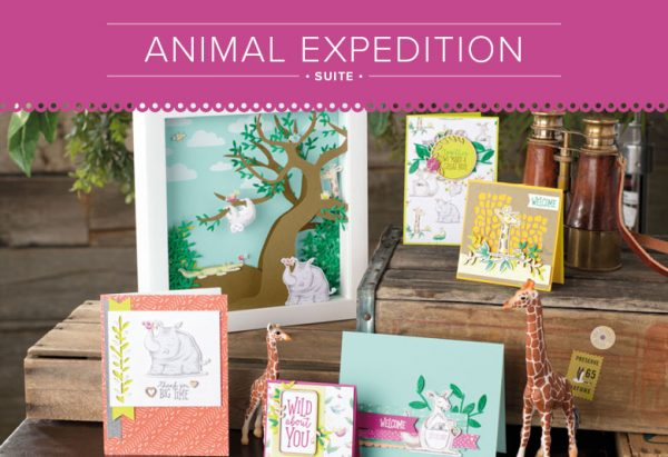 Animal Expedition Suite 11002