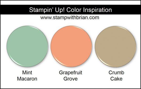 Stampin' Up! Color Inspiration: Mint Macaron, Grapefruit Grove, Crumb Cake