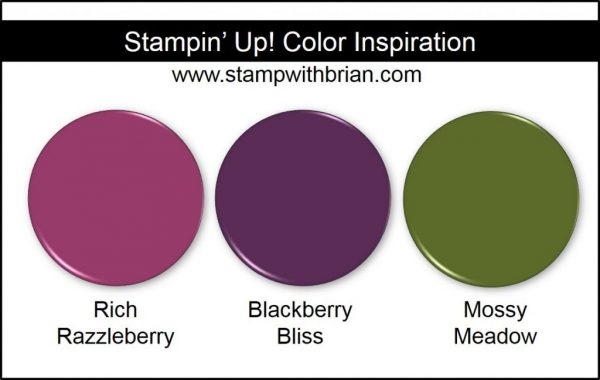 Stampin' Up! Color Inspiration: Rich Razzleberry, Blackberry Bliss, Mossy Meadow