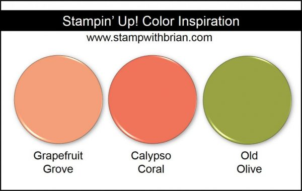 Stampin' Up! Color Inspiration: Grapefruit Grove, Calypso Coral, Old Olive