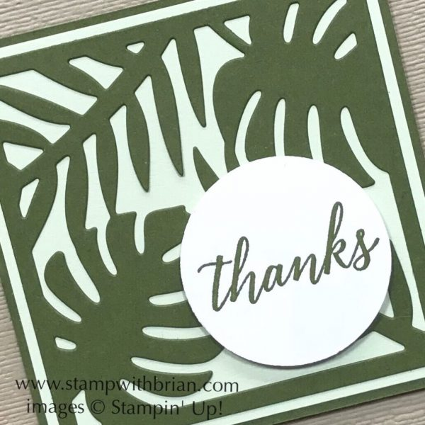 Tropical Chic Bundle, Stampin' Up!, Brian King