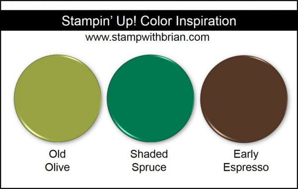 Stampin' Up! Color Inspiration: Old Olive, Shaded Spruce, Early Espresso