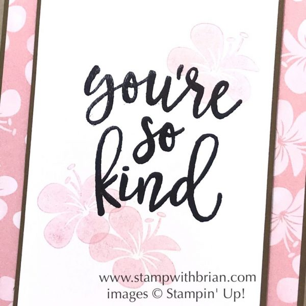 Notes of Kindness Card Kit, Tropical Chic, Stampin' Up!, Brian King, CTS281