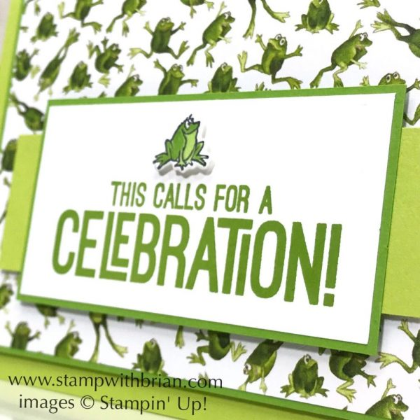 Calls for a Celebration, Cauldron Bubble Bundle, Stampin' Up!, Brian King