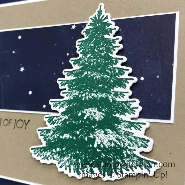 Winter Woods, Night in Bethlehem, Stampin' Up!, Brian King, Christmas card