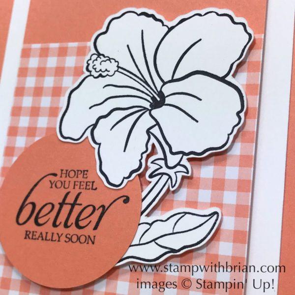 Humming Along, Gingham Gala Designer Series Paper, Stampin' Up!, Brian King, get well card