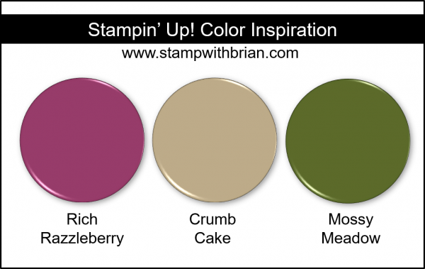 Stampin' Up! Color Inspiration - Rich Razzleberry, Crumb Cake, Mossy Meadow