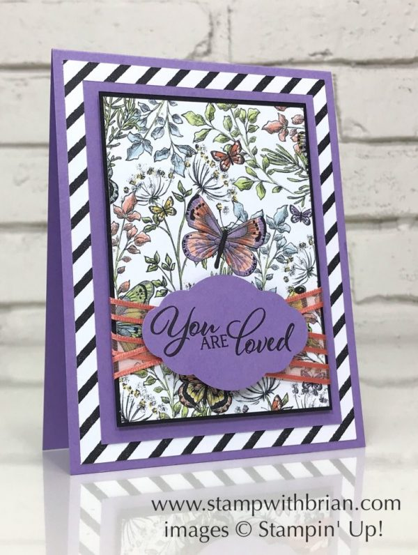 Forever Lovely, Botanical Butterfly Designer Series Paper, Stampin' Up!, Brian King
