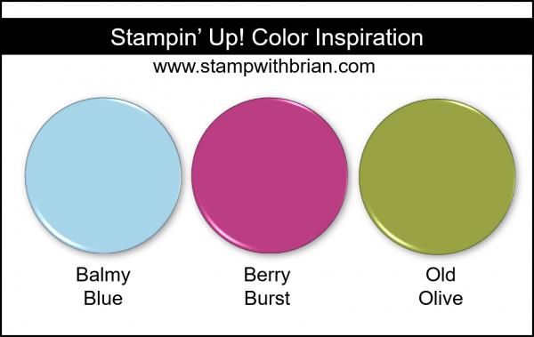 Stampin' Up! Color Inspiration - Balmy Blue, Berry Burst, Old Olive