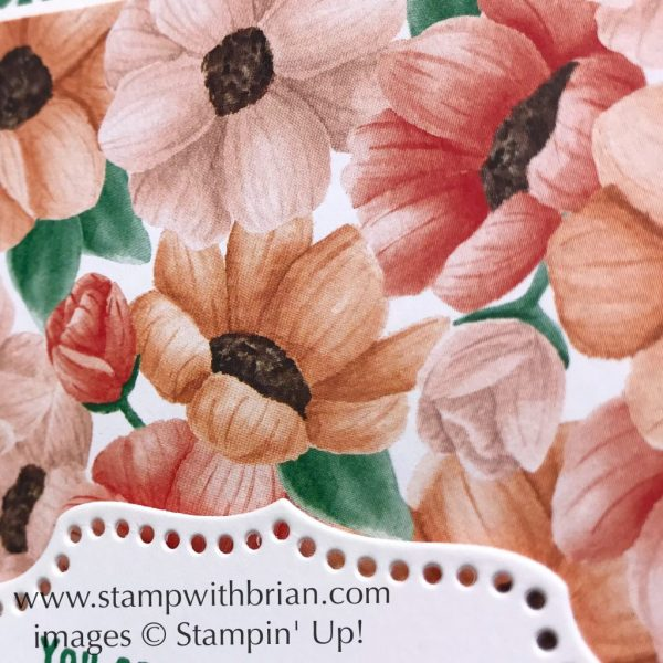 All Adorned, Painted Seasons Designer Series Paper, Stampin' Up!, Brian King