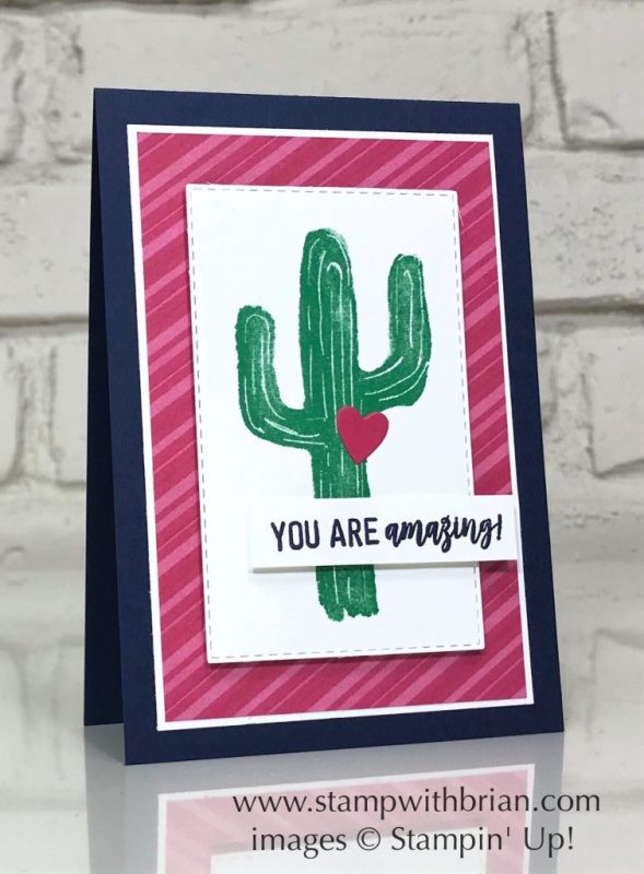 Flowering Desert, Amazing Life, Stampin' Up!, Brian King, Valentine's Day card