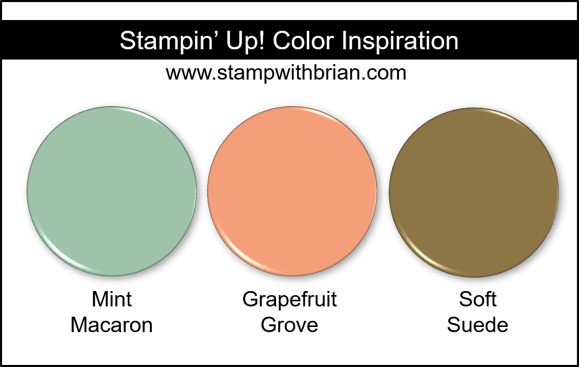 Stampin' Up! Color Inspiration - Mint Macaron, Grapefruit Grove, Soft Suede
