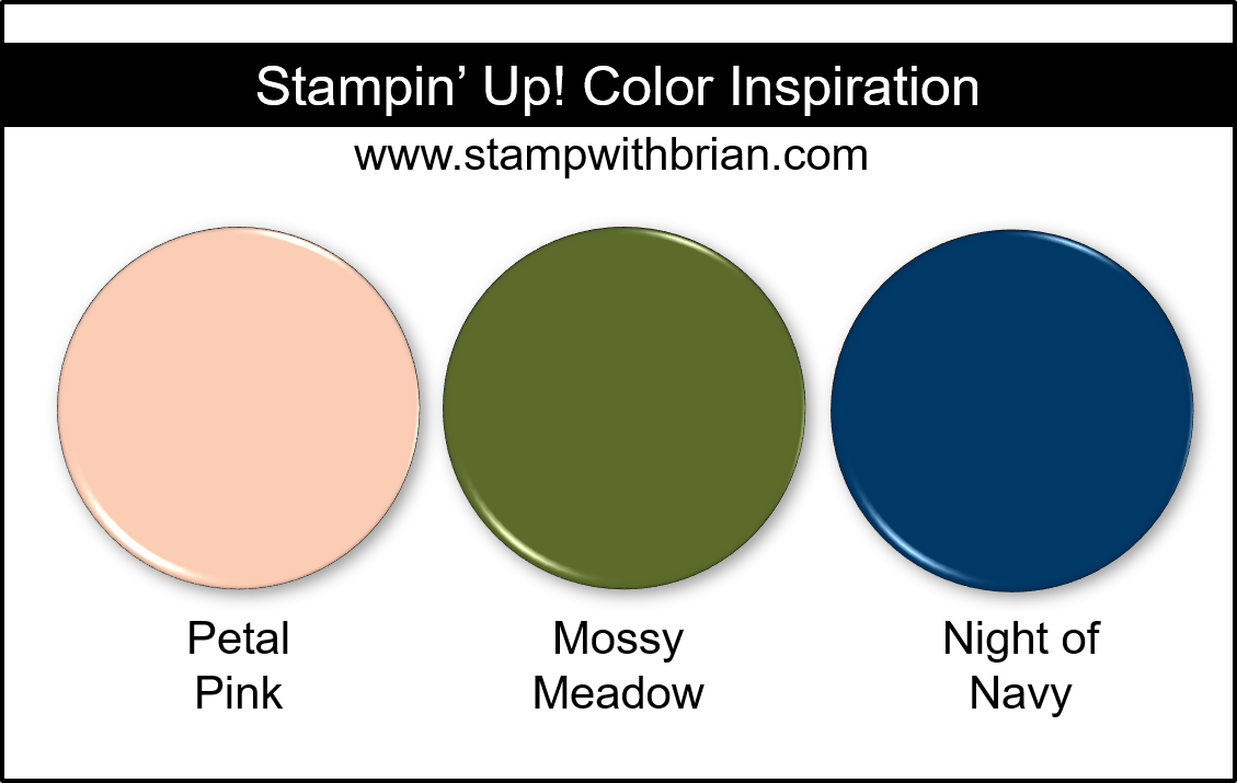 Stampin' Up! Color Inspiration - Petal Pink, Mossy Meadow, Night of Navy