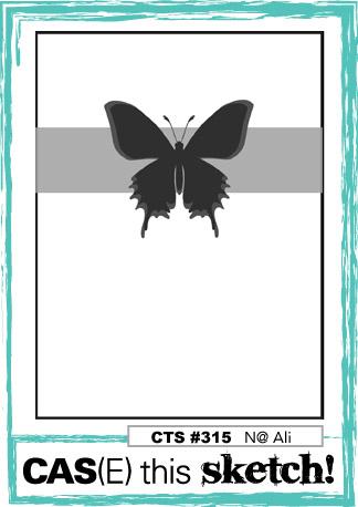 CTS315