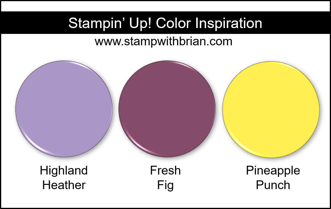 Stampin' Up! Color Inspiration - Highland Heather, Fresh Fig, Pineapple Punch