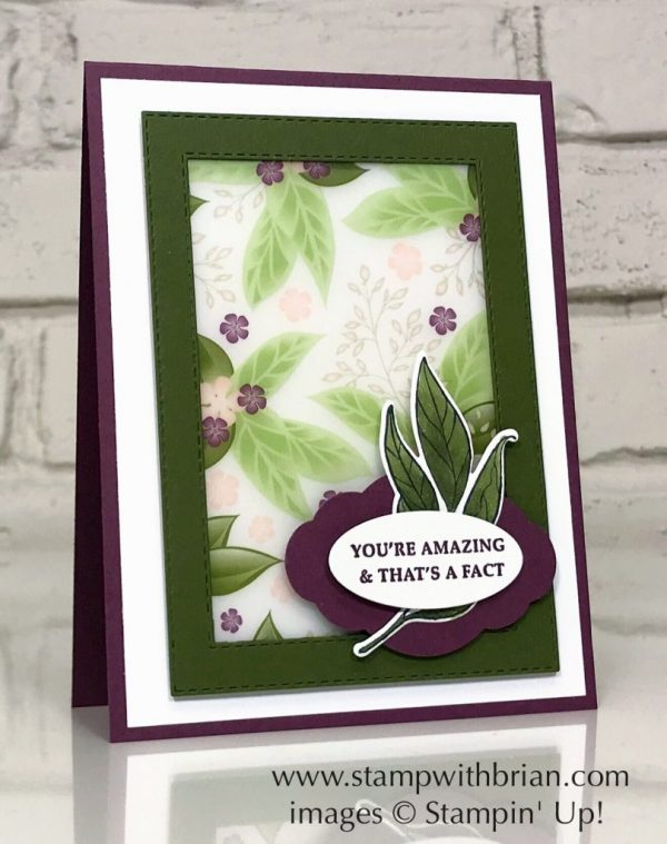 Strong & Beautiful, Wonderful Romance, Working with Vellum, Stampin' Up!, Brian King