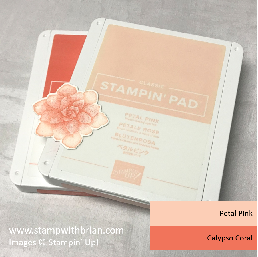 Succulent Color Combinations - Petal Pink and Calypso Coral, Painted Seasons, Stampin' Up!, Brian King