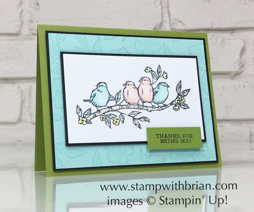 Bird Ballad, Stampin' Up!, Brian King, 2019 Annual Catalog Sneak Peek