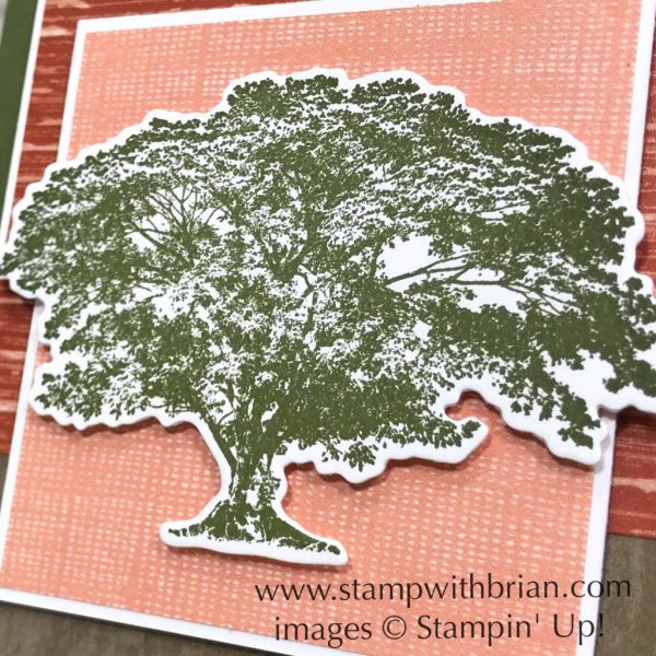 Rooted in Nature, Stampin' Up!, Brian King