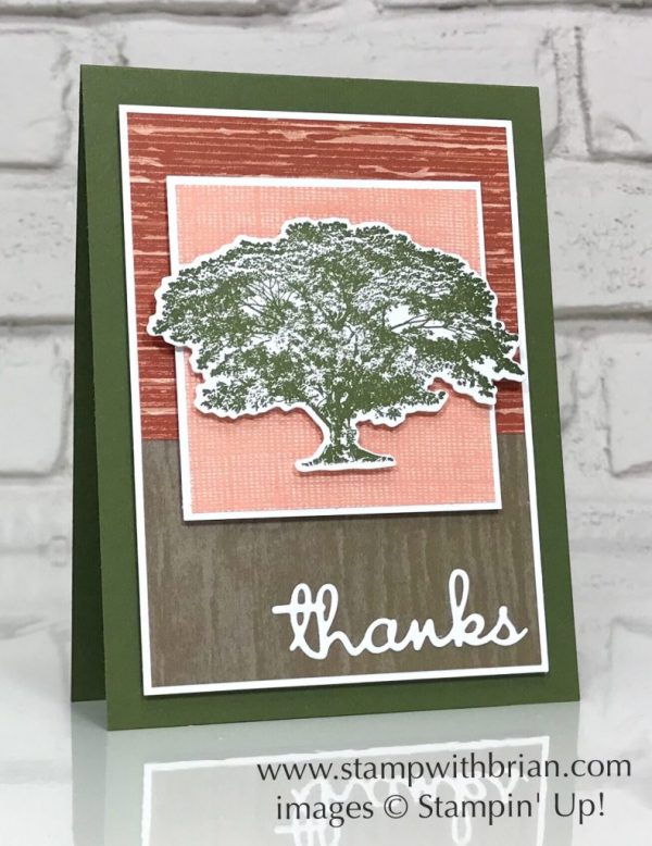 Rooted in Nature, Well Written Framelits Dies, Stampin' Up!, Brian King