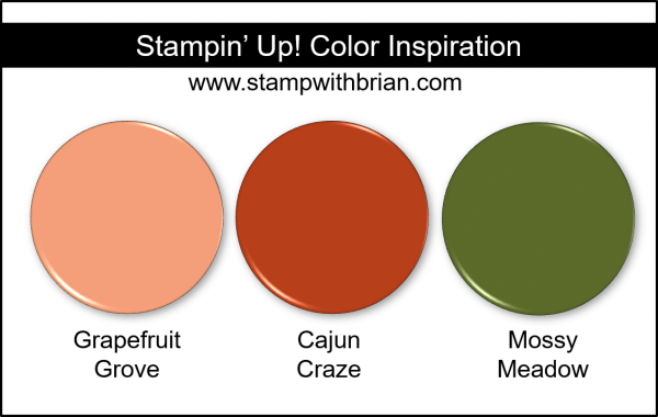 Stampin' Up! Color Inspiration - Grapefruit Grove, Cajun Craze, Mossy Meadow