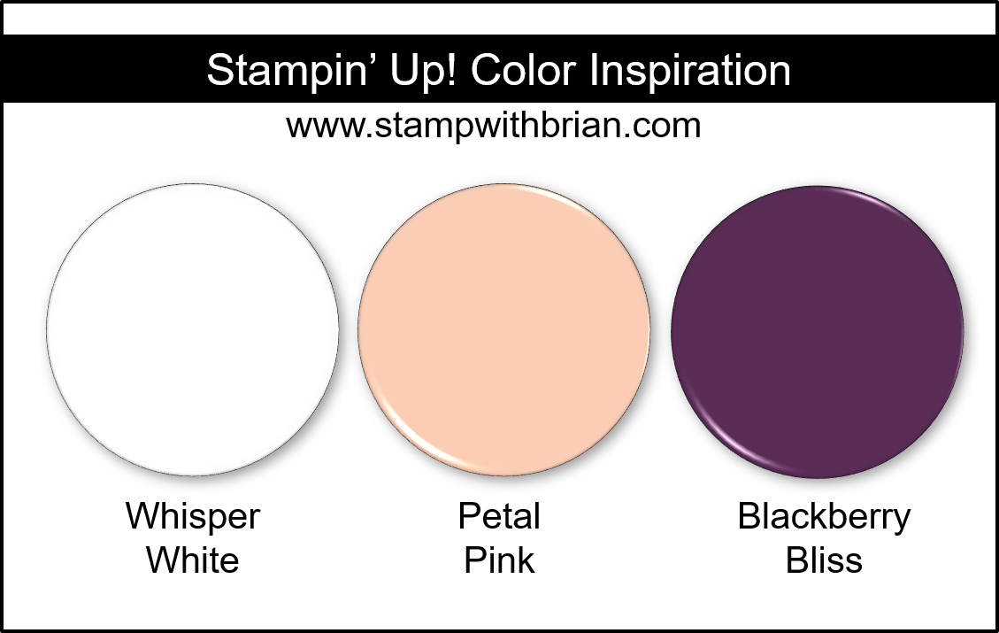 Stampin' Up! Color Inspiration - Whisper White, Petal Pink, Blackberry Bliss