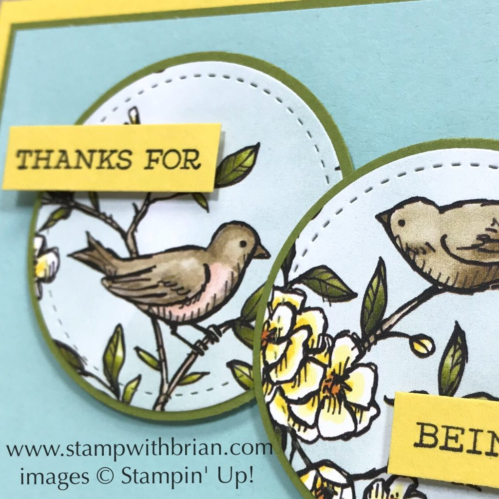 Free as a Bird, Bird Ballad Designer Series Paper, Stampin' Up!, Brian King, thank you card