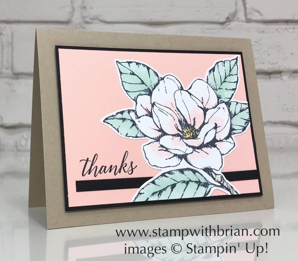 Good Morning Magnolia Bundle, Tropical Chic, Stampin' Up!, Brian King