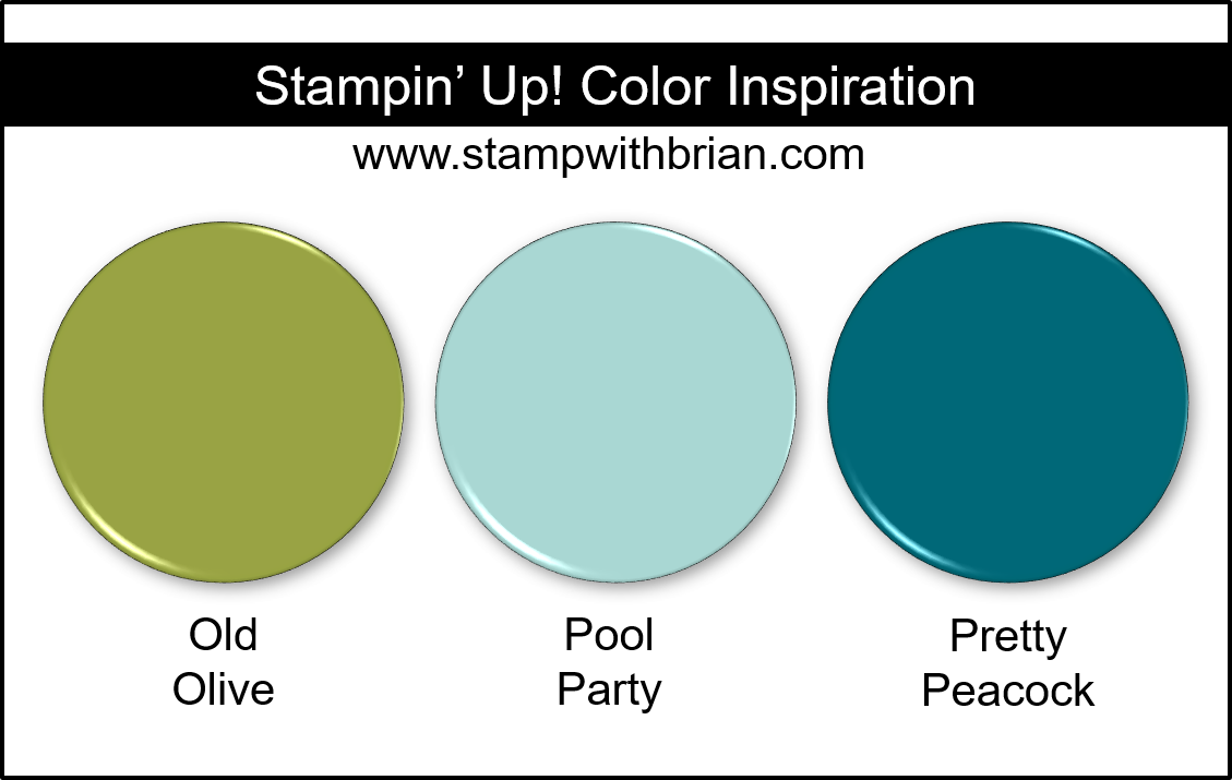 Stampin' Up! Color Inspiration - Old Olive, Pool Party, Pretty Peacock