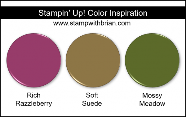 Stampin' Up! Color Inspiration - Rich Razzleberry, Soft Suede, Mossy Meadow