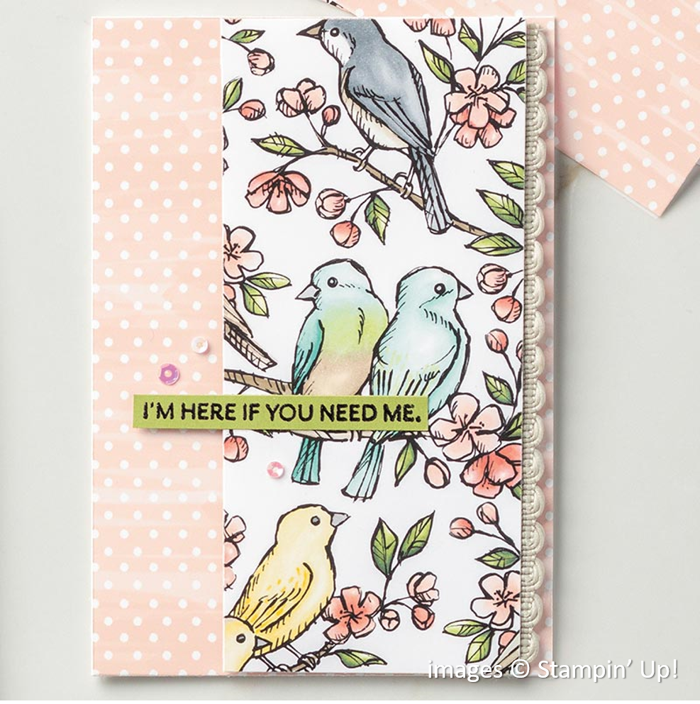 Bird Ballad Designer Series Paper, Here's a Card, Stampin' Up!