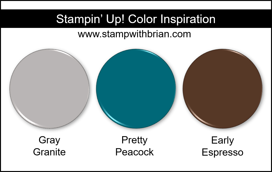 Stampin' Up! Color Inspiration - Gray Granite, Pretty Peacock, Early Espresso