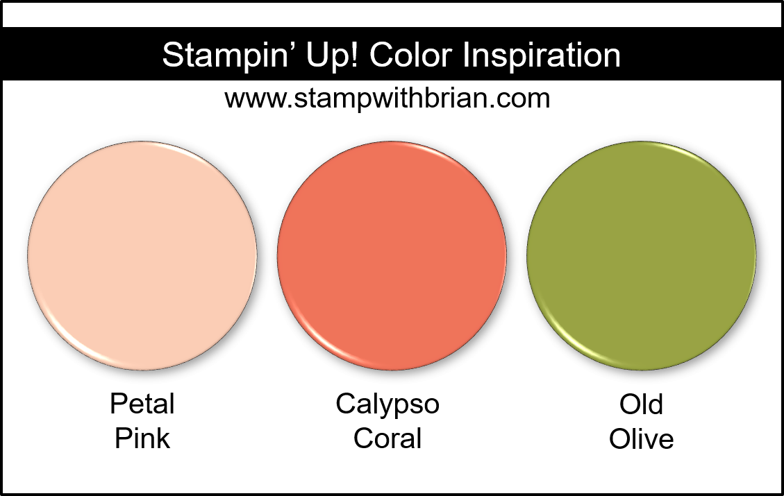 Stampin' Up! Color Inspiration - Petal Pink, Calypso Coral, Old Olive