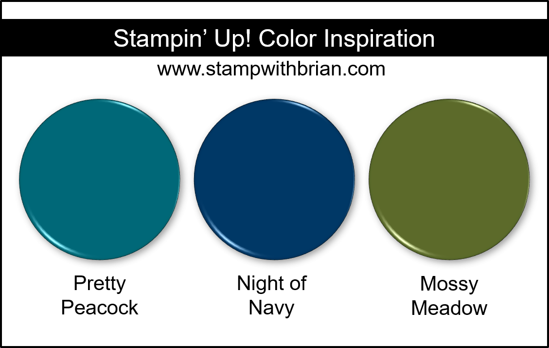Stampin' Up! Color Inspiration - Pretty Peacock, Night of Navy, Mossy Meadow
