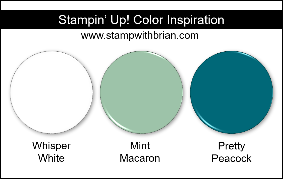 Stampin' Up! Color Inspiration - Whisper White, Mint Macaron, Pretty Peacock