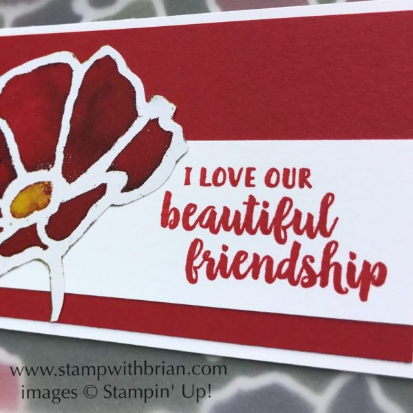 See a Silhouette Designer Series Paper, Beautiful Friendship, Stampin' Up!, Brian King