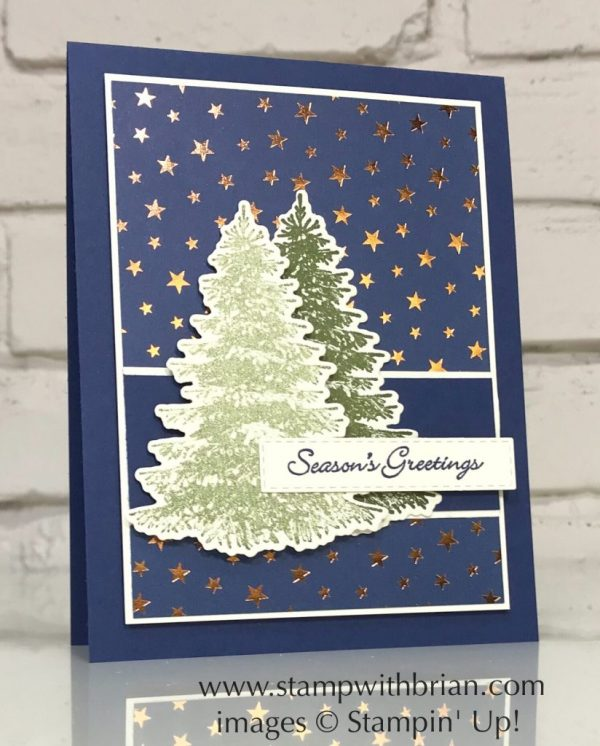 Winter Woods, Itty Bitty Christmas, Brightly Gleaming Specialty Designer Series Paper, Stampin' Up!, Brian King