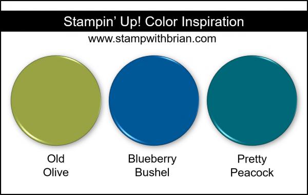 Stampin' Up! Color Inspiration - Old Olive, Blueberry Bushel, Pretty Peacock