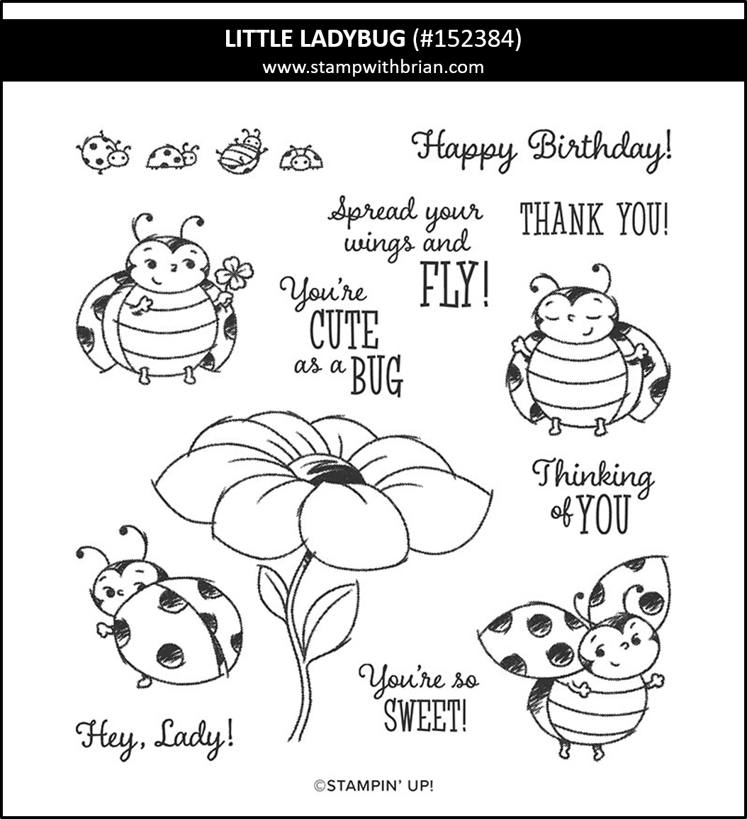 Little Ladybug Host Set, Stampin' Up!, Brian King