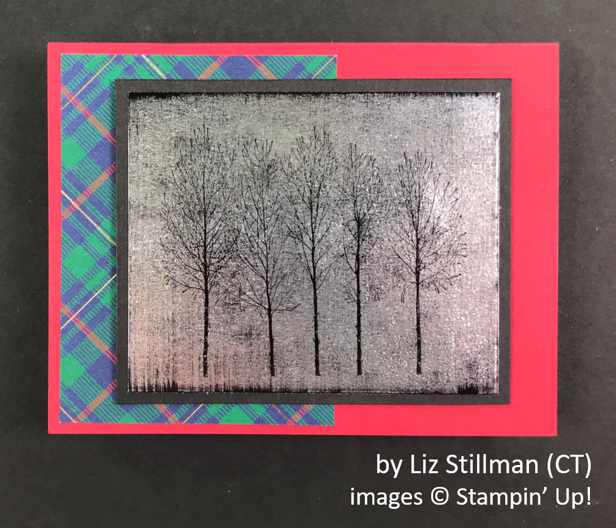by Liz Stillman, Brian's Holiday One-for-One Swap, Stampin' Up!