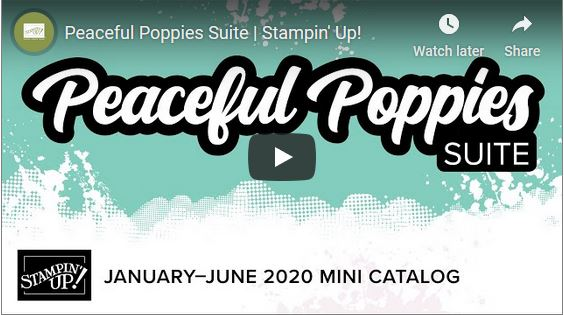 Peaceful Poppies Video