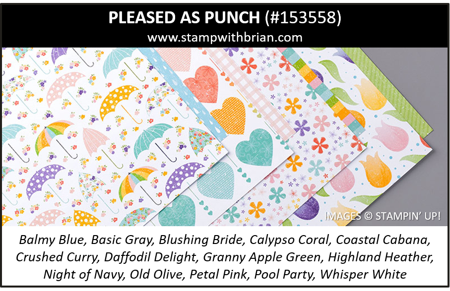 Pleased as Punch Designer Series Paper, Stampin Up! 153558